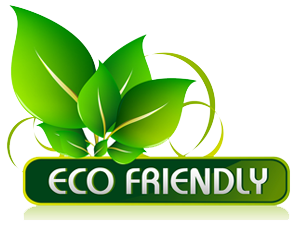 Mean Green Clean Eco Friendy Cleaning Company